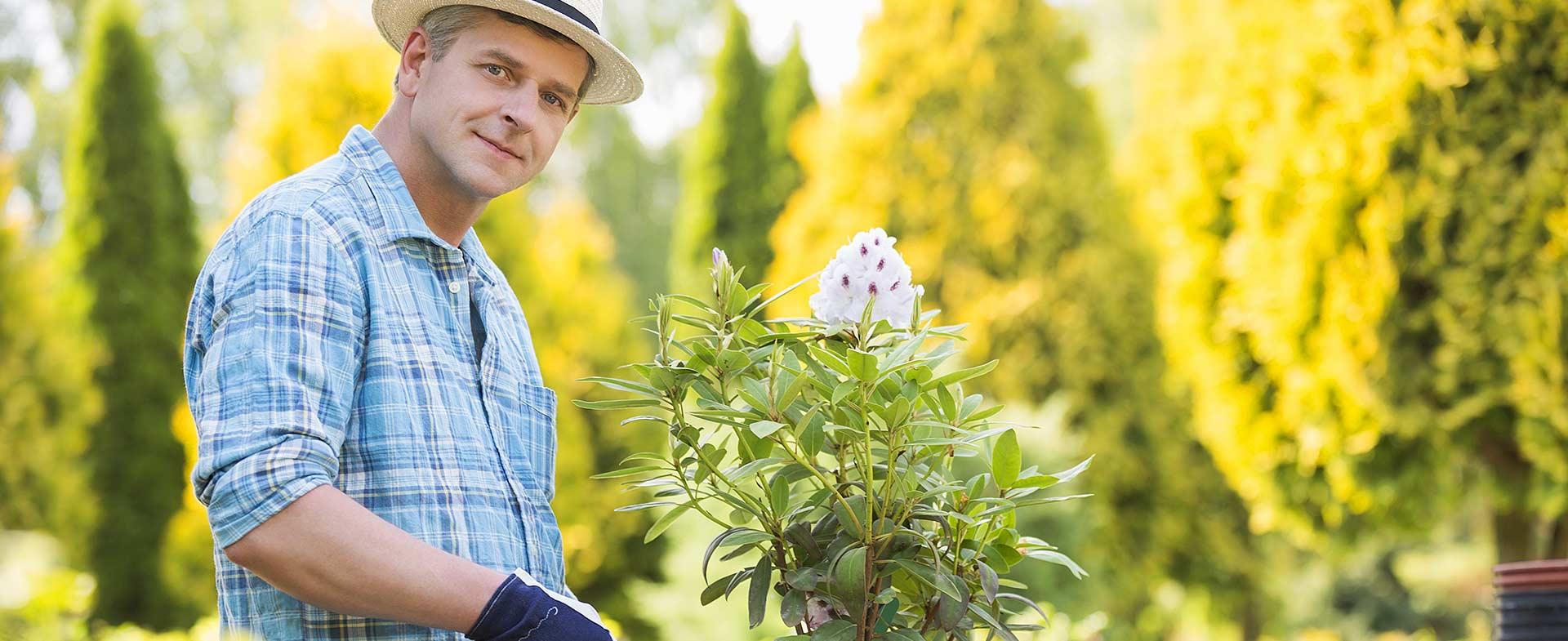 Gardeners Downe